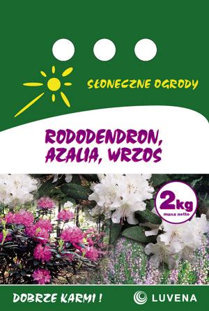 rododendron_azalia_wrzos